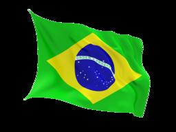 Brazil Virtual Phone Number