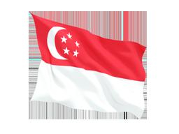 Singapore Virtual Phone Number