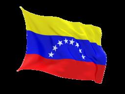 Venezuela Virtual Phone Number